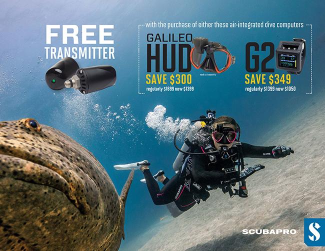 Free Transmitter